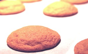 Evelyn Raab's Soft Ginger Cookies